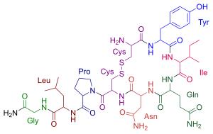 Ocitocina